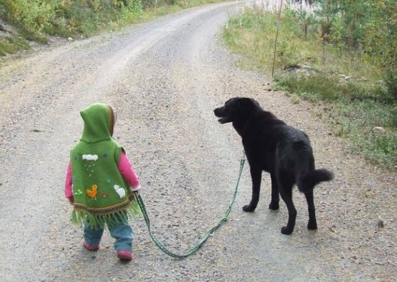 Young boy walking dog